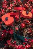 GRINSTEAD DEL ESTE, SUSSEX/UK DEL OESTE - 3 DE JULIO: Vista del estallido artificial Fotos de archivo libres de regalías