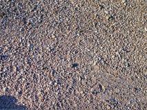 grint in een parkeerterrein Stock Foto