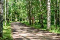 grintweg in de zomerplatteland Royalty-vrije Stock Foto