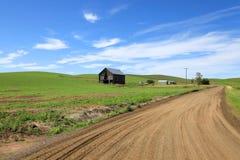 Grintweg door landbouwbedrijven royalty-vrije stock afbeelding