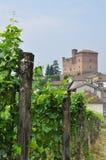 Grinzane Cavour, Langhe, Piemonte del sud, Italia immagine stock