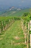 Grinzane Cavour, Langhe, Piemonte del sud, Italia Fotografie Stock