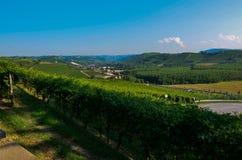 Grinzane Cavour, Piemonte, Italia Luglio 2018 Al piede delle viste celesti del castello tutt'intorno delle vigne immagine stock