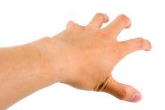 gripande hand Royaltyfri Bild