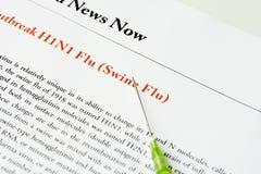 Gripe de los cerdos Imagen de archivo