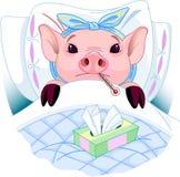 Gripe del cerdo Fotografía de archivo libre de regalías