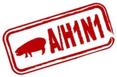 Gripe H1N1 de los cerdos Foto de archivo libre de regalías