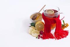 Gripe y bebida fría con el limón, miel, jengibre foto de archivo