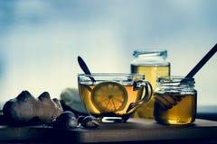 Gripe y medicina para el resfriado naturales Imagen de archivo libre de regalías