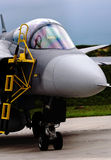 Gripen detail Stock Images