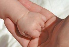 Gripit hårt om nyfött behandla som ett barn flickahanden i hand för moder` s Arkivbilder