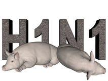 Grippe de porcs. Photos libres de droits