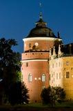 Gripsholm城堡剧院塔 免版税库存照片