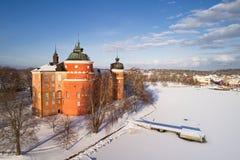 Gripsholm城堡exterial视图在春天 免版税库存图片