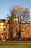 Gripsholm castle Royalty Free Stock Images
