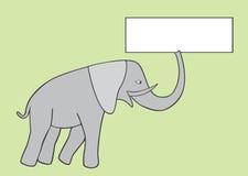gris d'éléphant Photos libres de droits