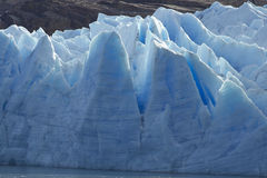 Gris de glacier, parc national de Torres del Paine, Chili Image stock
