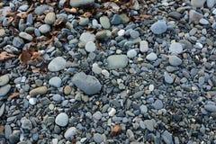gris de la Guijarro-piedra Fotos de archivo libres de regalías