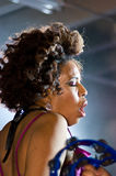 Gris de Macy à la réception 2010 de Perez Hilton SXSW Photos libres de droits