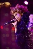 Gris de Macy Images stock