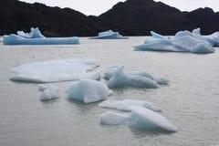 Gris del glaciar, Patagonia fotografía de archivo libre de regalías