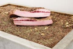 Griskött späcker i marmor badar arkivfoto