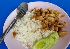Griskött stekt vitlök på ris Royaltyfria Bilder
