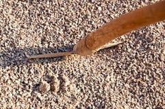 Grit wit shovel. Closeup of grit with a shovel Stock Images