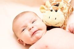 Gritando 2 meses de bebê Imagem de Stock Royalty Free