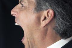 Gritando o homem de negócios Imagem de Stock Royalty Free