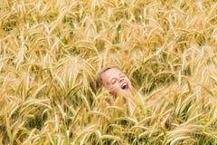 Gritaria da menina no campo de trigo fotografia de stock royalty free