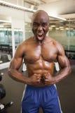 Gritaria muscular do homem ao dobrar muscles no gym imagem de stock