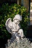 Griterío del ángel Fotografía de archivo