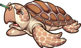 Griterío triste de la tortuga de mar Foto de archivo libre de regalías