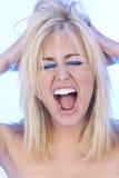Grito e grito Fotos de Stock