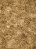 Gritty background texture. Imprints of wood textures Royalty Free Stock Images