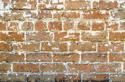 Gritty Brick Wall Stock Images