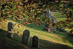 Gritty Graveyard. A cemetery scene with digital grit applied, with focus on the leaves in the foreground with blurred tombstones in the background Royalty Free Stock Images