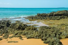 Gritty rocks by the shoreline with small  pools. Gritty rocks by the shoreline with small salt water pools Stock Images