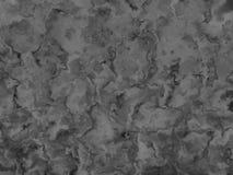 griz Стоковое Изображение