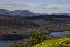Grizedale森林-英国湖区 库存图片