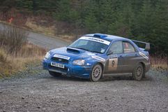 Grizedale Stages Rally 2009 Royalty Free Stock Image