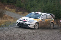 Grizedale Stages Rally 2009 Stock Image