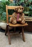 Grizzle der Teddybär betreffen einen Weinlesestuhl stockfotografie