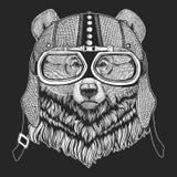 Grizzley björn som söker efter föda för mat Tappningmotorcykelhemlet Retro stilillustration med den djura cyklisten för barn, ung vektor illustrationer