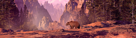 Grizzly Bear. In a Colorado Rocky Mountain landscape royalty free illustration