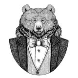 Grizzly bear Big wild bear Hipster animal Hand drawn illustration for tattoo, emblem, badge, logo, patch, t-shirt. Grizzly bear Big wild bear Hand drawn image royalty free stock photo
