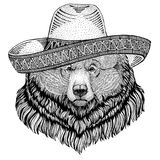 Grizzly bear Big wild bear Wild animal wearing sombrero Mexico Fiesta Mexican party illustration Wild west. Wild animal wearing sombrero Mexico Fiesta Mexican Royalty Free Stock Photos