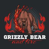 Grizzly bear and fire, emblem elements - vector Royalty Free Stock Image