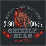 Grizzly bear and fire, emblem elements - vector Stock Image